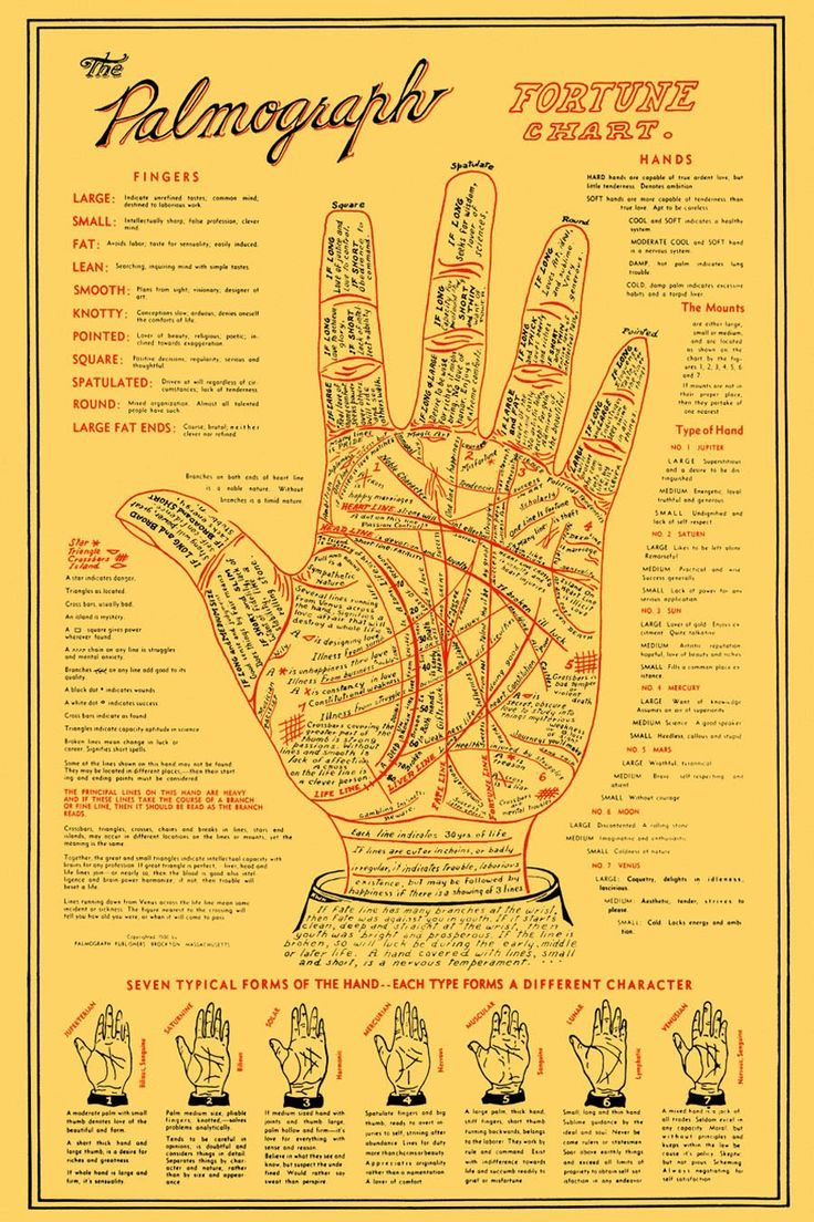 Q&A: How does palm reading work?