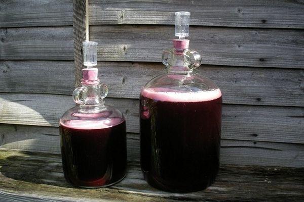 Ezzel az itallal a sug�rkezel�s ut�n visszaer?s�thet? az immunrendszer