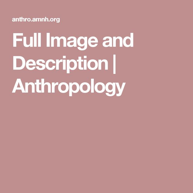 Full Image and Description | Anthropology