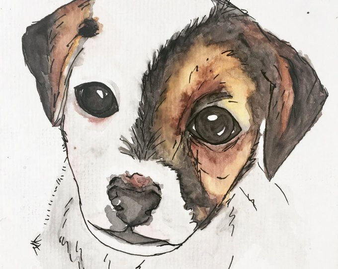 Doug the roly poly puppy with a patch!  Get your own watercolor pet portrait from Pretty Poppy by Sally on etsy