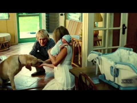 THe movie Marley and Me is special to all dog lovers. Here ...  THe movie Marle...