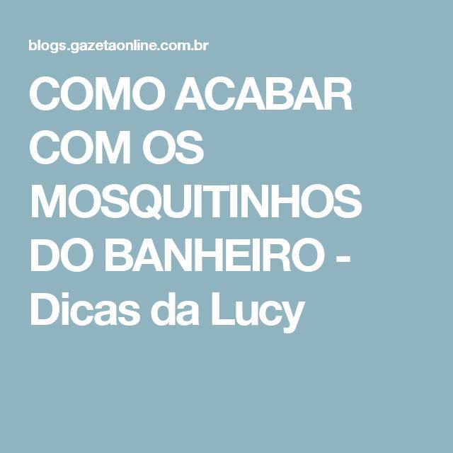 COMO ACABAR COM OS MOSQUITINHOS DO BANHEIRO - Dicas da Lucy