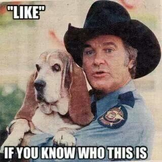 Lovedd watching the Dukes of Hazzard back in the day!! :-)