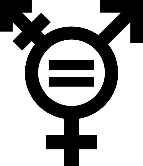 Transgender Symbol Jewelry | Found on upload.wikimedia.org