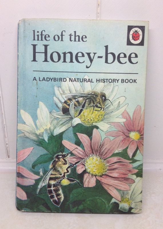 1960s ladybird Book bumble bee honey book by NannyLilasAttic