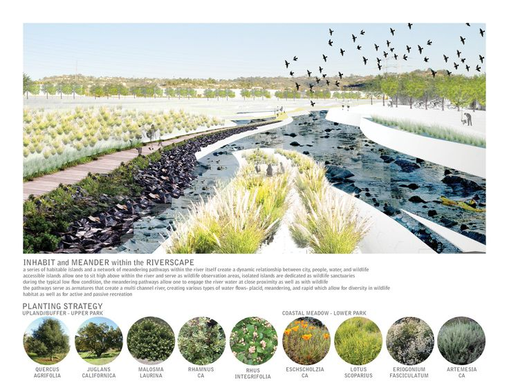 The Los Angeles Riverscape : an Urban Estuary on Behance