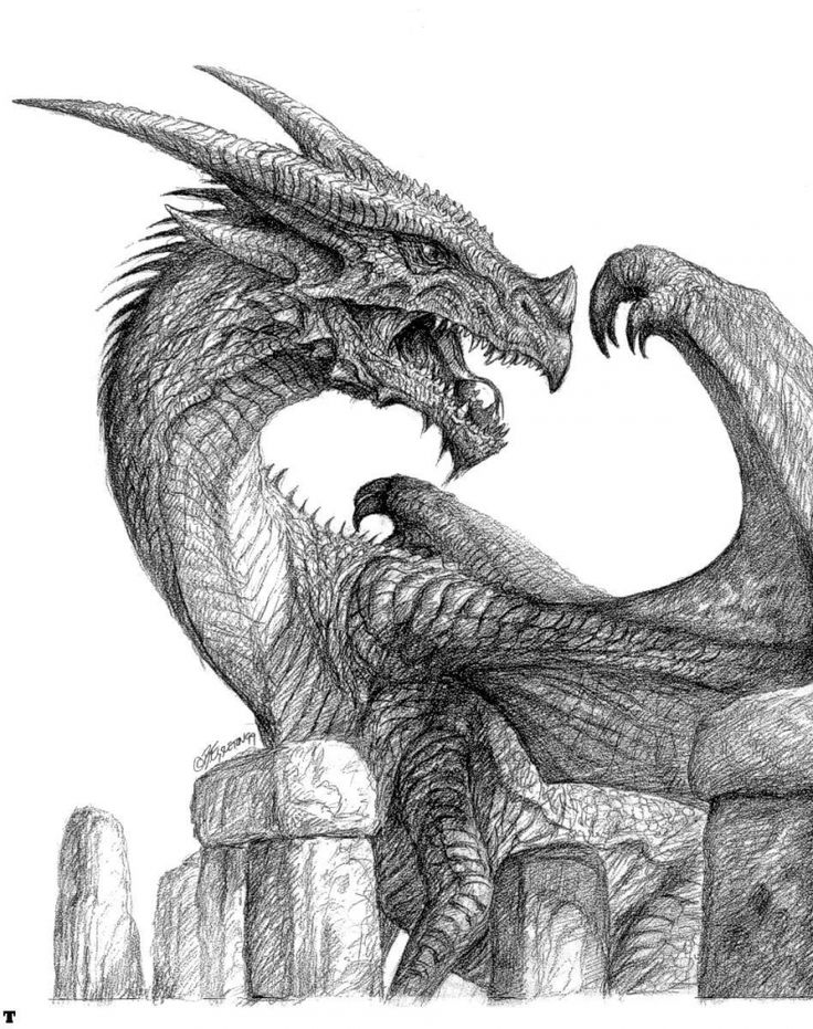 Dragon drawing, I love this for some reason. Like it catches my eye when I'm scrolling down the page. Who ever drew this is amazing!!!