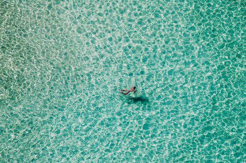 Lone swimmer - North Bondi beach