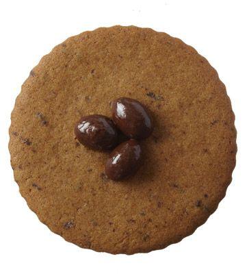 Espresso gingerbread cookie