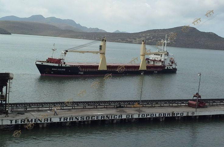 Recibiendo al barco llamado MSM Douro procedente de Nueva Orleans con una carga de 5,160 toneladas de Nitrato de Amonio