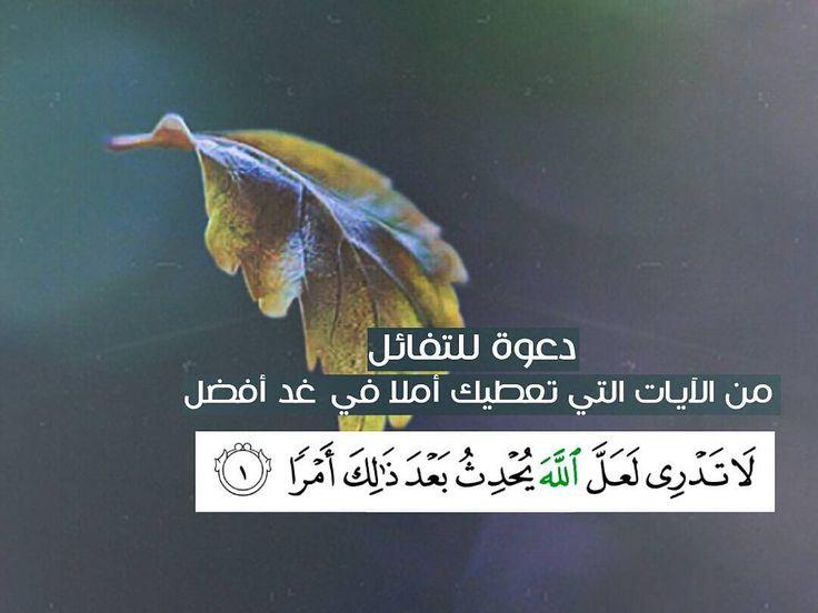 .. دعوة للتفائل من الآيات التي تعطيك الأمل في غد افضل (لا تدري لعل الله يحدث بعد ذلك امرا) _______________ منشن لغيرك ليتابع الحساب ولك اجره by heeekma Kalimah on facebook http://ift.tt/1VXr4dl Kalimah on twitter https://twitter.com/kalima_h Kalimah on instagram http://ift.tt/1LU58Az Kalimah on pinterest http://ift.tt/1hKqXEA Kalimah on bloger http://ift.tt/1LU56sh Kalimah on tumblr http://ift.tt/1VXr5hr ______________________________________ إن الذين قالوا ربنا الله ثم استقاموا تتنزل عليهم…