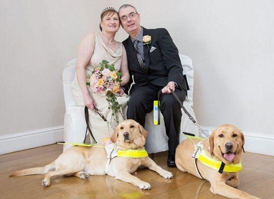 Casal de cegos se apaixona após seus cães-guias se tornarem inseparáveis | Portal PcD On-Line