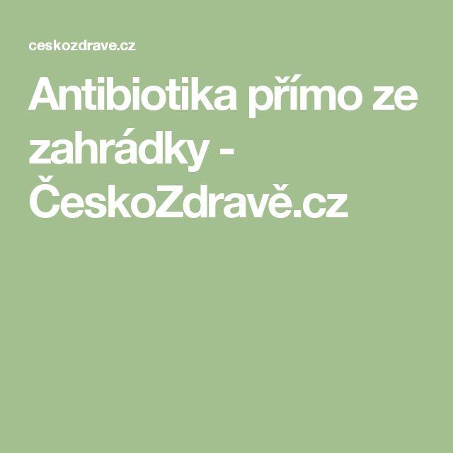 Antibiotika přímo ze zahrádky - ČeskoZdravě.cz