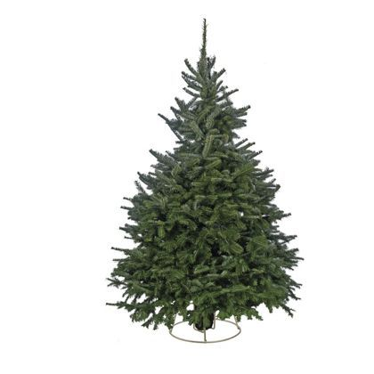 8ft Black Christmas Tree