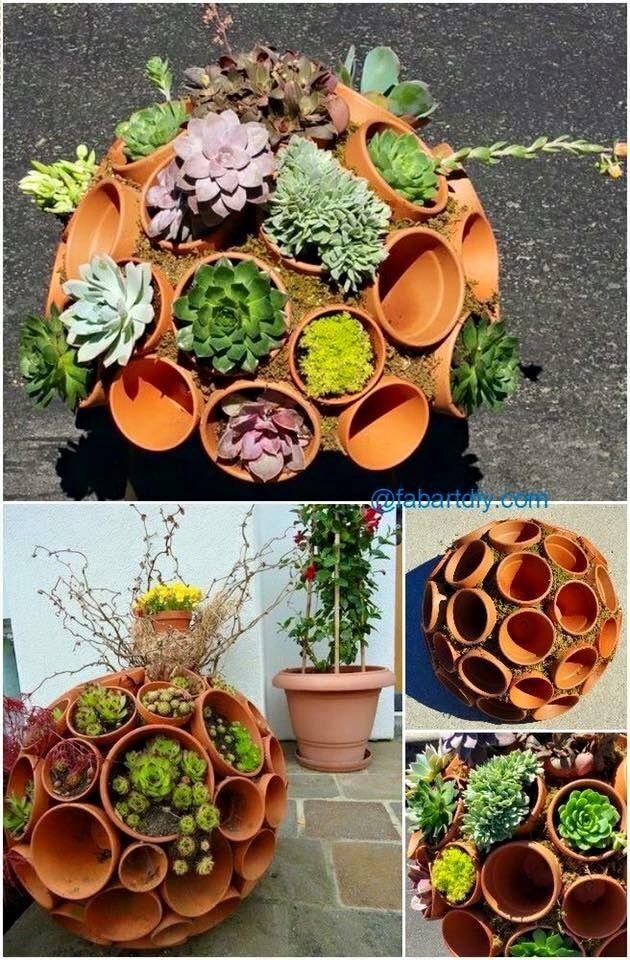 Spherical pots of succulents.