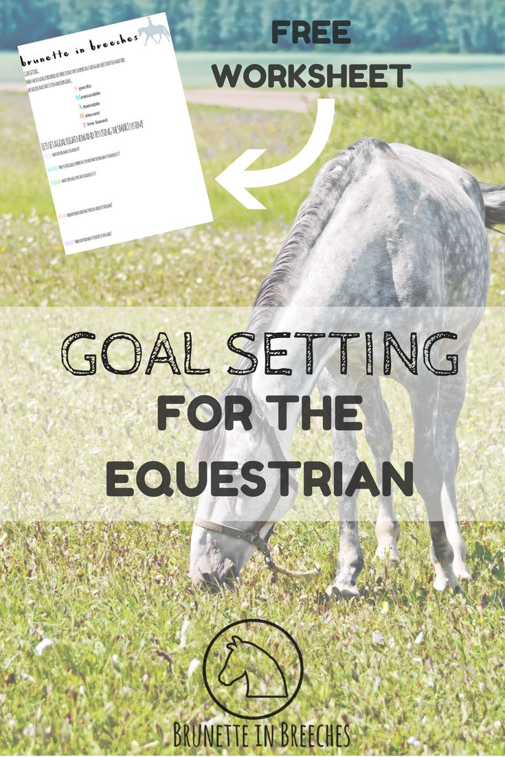 How to set equestrian goals to ensure success + FREE goal setting worksheet!