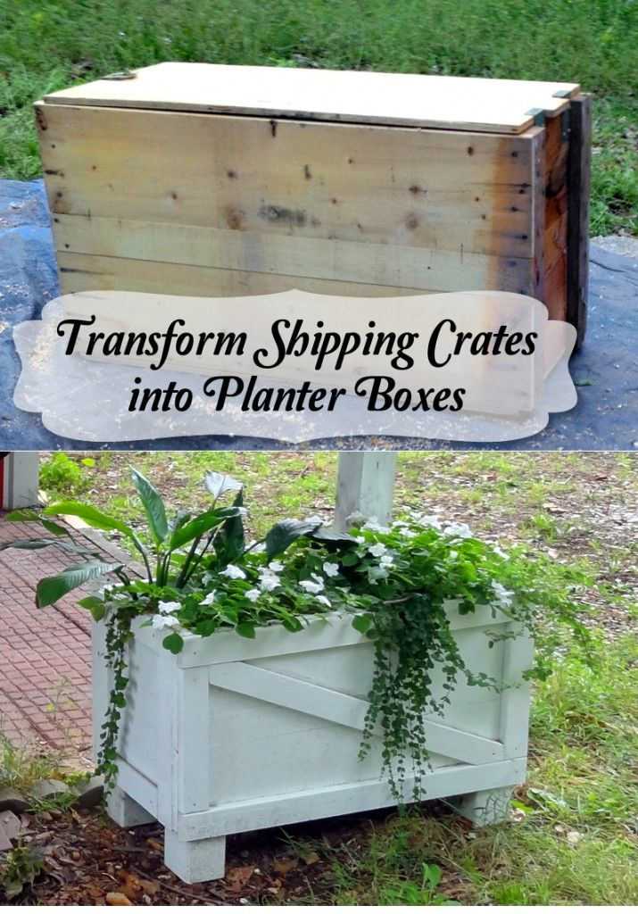 Shipping crates turned planter boxes- before and after
