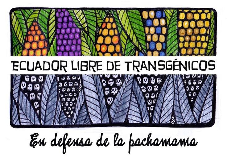 Ecuador libre de Transgénicos