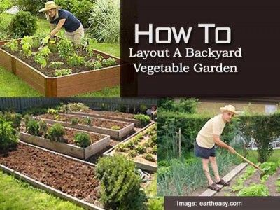 How To Layout A Backyard Vegetable Garden - Plant Care Today