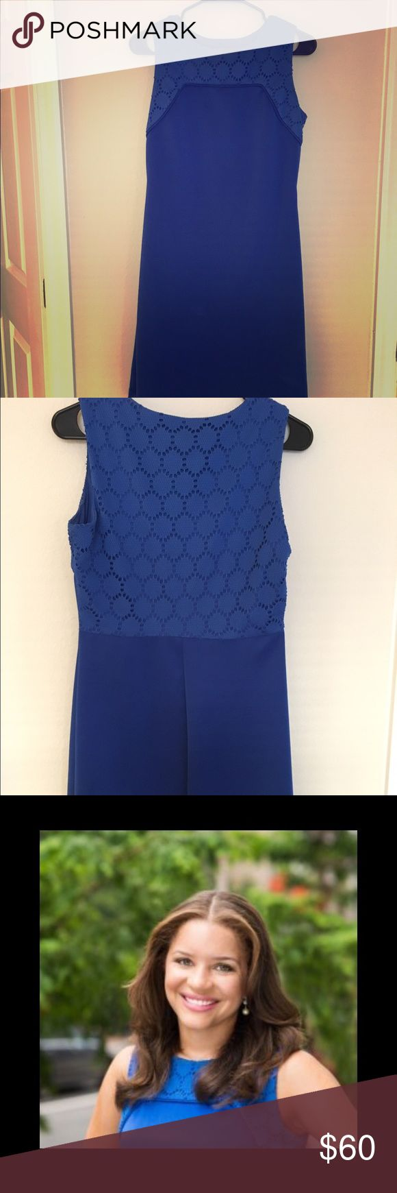 Blue Donna Ricco Shift Pretty blue shift with lace detail on the back and neckline. Wear it while taking your professional headshots (I did)! The color looks great on everyone. Donna Ricco Dresses
