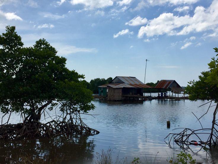 Village flottant le long de la mangrove au Parc national de Ream ; Sihanoukville Province , CAMBODGE 2017