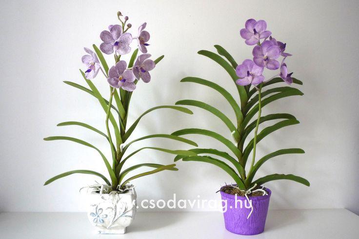 Vanda (Pártáskosbor) - My clay flower https://www.facebook.com/Csodavirag