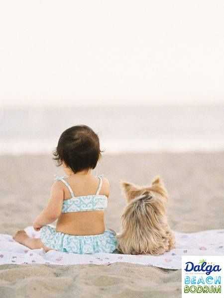 Bazen unutulmaz tatil anılarımızda, hayvan dostlarımızın yeri büyük olur.  #DalgaBeachBodrum #DalgaBeach #Hayvanlar #Köpekler #Dostluk #BodrumHerMevsimGüzel http://on.fb.me/1GGjhMO