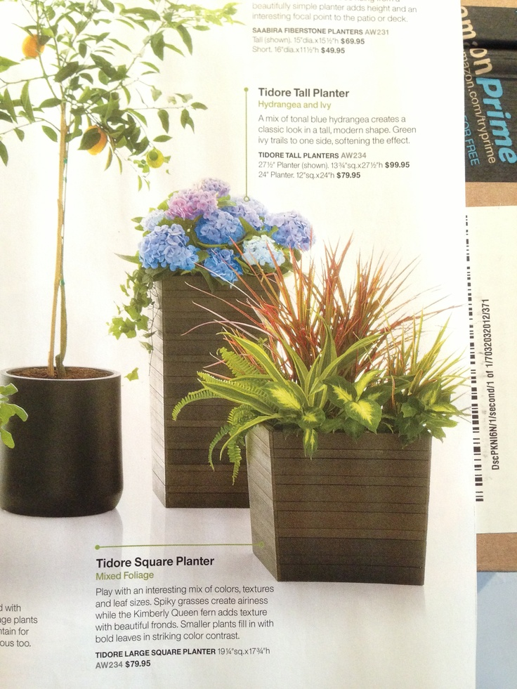 Pots And Containers From Crate Barrel Tall Planters 400 x 300