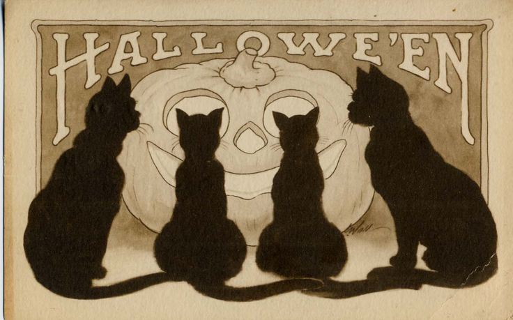 Halloween, Witch, Goblin, Black Cat, Jack-O-Lantern, Bat, Skull, Ghost, Spooky, Full Moon, Pumpkin, Trick or Treat, Autumn, Fall, Haunting, Scarecrow, Magic Potion, Creepy, Spells: