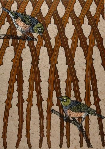 Jo Ogier illustration waxeye