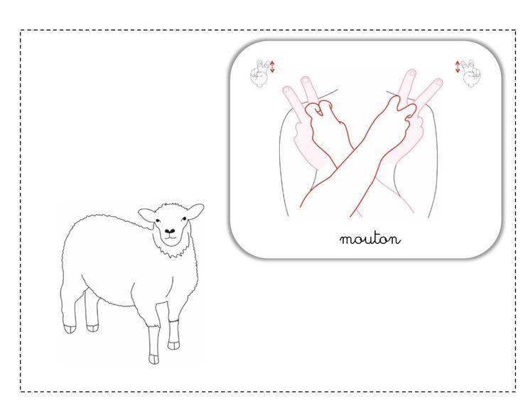 mouton LSF illustration