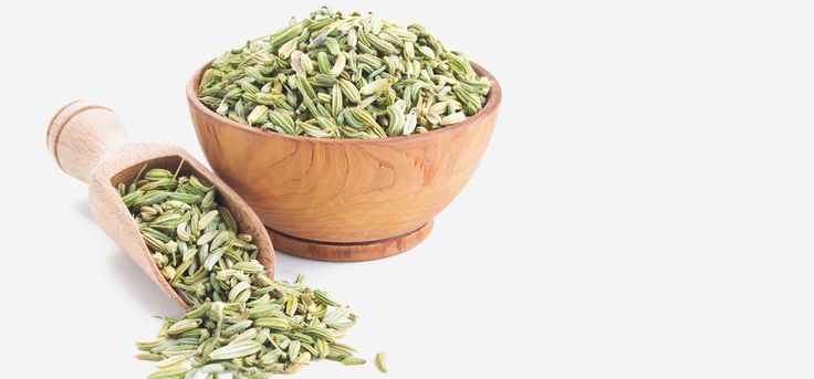 Fennel is an aromatic herb belonging to the parsley family. Read this post to learn about the health benefits of the fennel seeds & also its benefits for skin & health