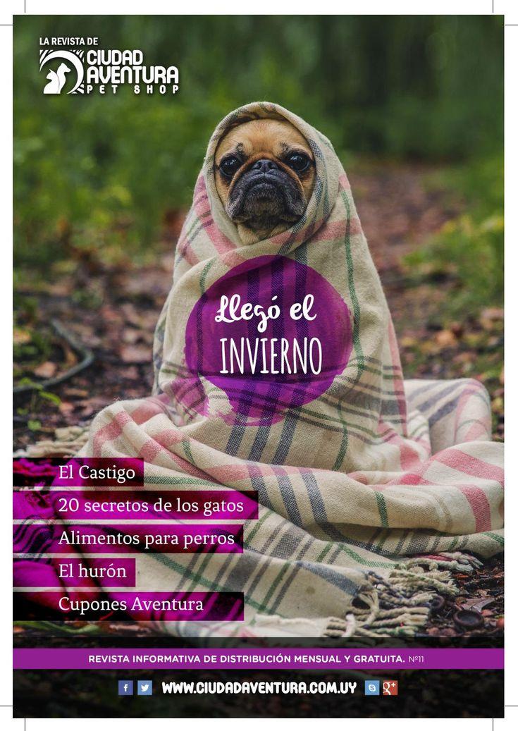 Revista Ciudad Aventura N°11  En esta edición de la revista de Ciudad Aventura conocerás los 20 secretos de los gatos. Te informarás sobre el Hurón como mascota y te sorprenderás con las curiosidades de este mes.