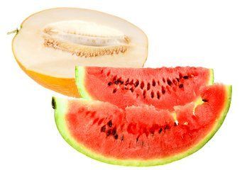 Honeydew and Watermelons are great for dehydrating! More info. at easy-food-dehydrating.com