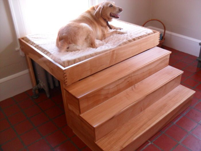 Elevated dog bed by Anthony Saporiti at Coroflot.com