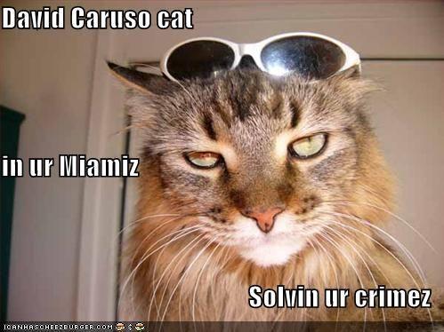 17 Best ideas about Sunglasses Meme on Pinterest | Kpop ...