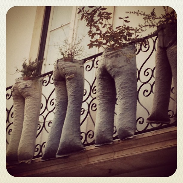 Fioriere Jeans in Portogallo / Flower Trousers in Portugal - pic by Marco Regazzo