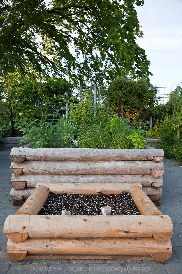 211 Best Raised Bed Gardens Images On Pinterest | Gardening, Raised Gardens  And Veg Garden