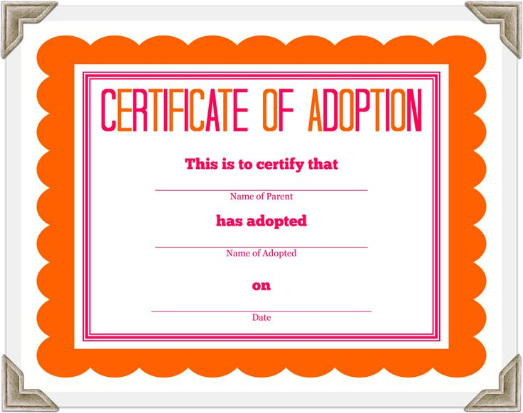 fake cat certificate of registration whith the pic | Stuffed Animal Adoption Certificate