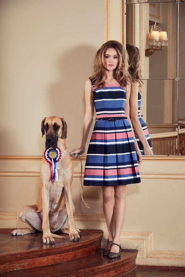 Chrysalis Stripe Dress   Navy and Multi   Dress