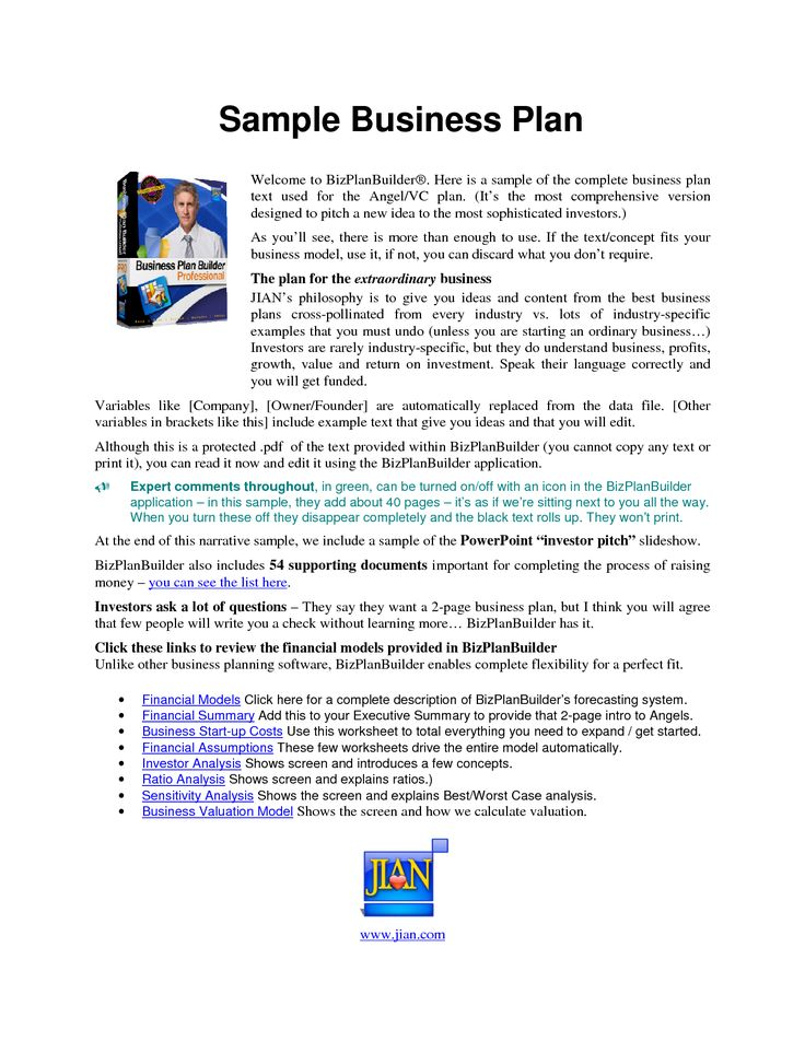 Printable Sample Business Plan Sample Form