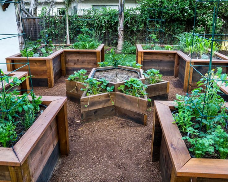 raised garden beds are easy on your back and will give your plants good drainage and generally better soil quality by building this u shaped garden bed