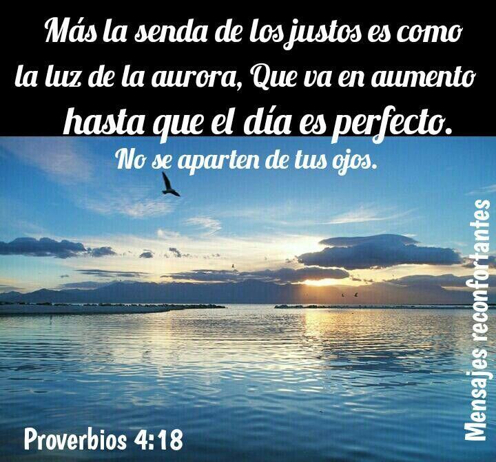 Mas la senda de los justos es como la luz de la aurora, Que va en aumento hasta que el día es perfecto. Proverbios 4:18 No se aparten de tus ojos; Guárdalas en medio de tu corazón; Porque son vida a los que las hallan, Y medicina a todo su cuerpo. Sobre toda cosa guardada, guarda tu corazón; Porque de él mana la vida. Examina la senda de tus pies,Y todos tus caminos sean rectos. No te desvíes a la derecha ni a la izquierda; Aparta tu pie del mal. Lo mejor está por venir. Amén!