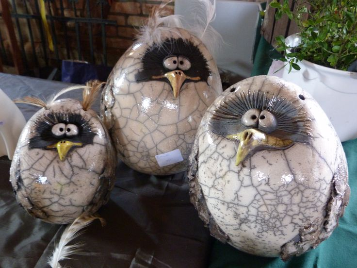 3 egg formed owls