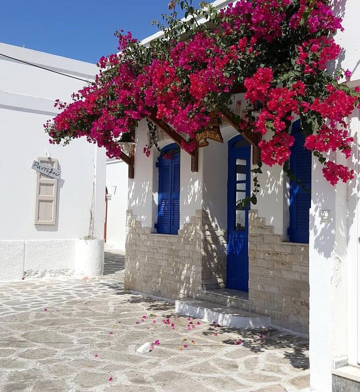 So lovely & colorful atmosphere in Antiparos island (Αντίπαρος)❤️.