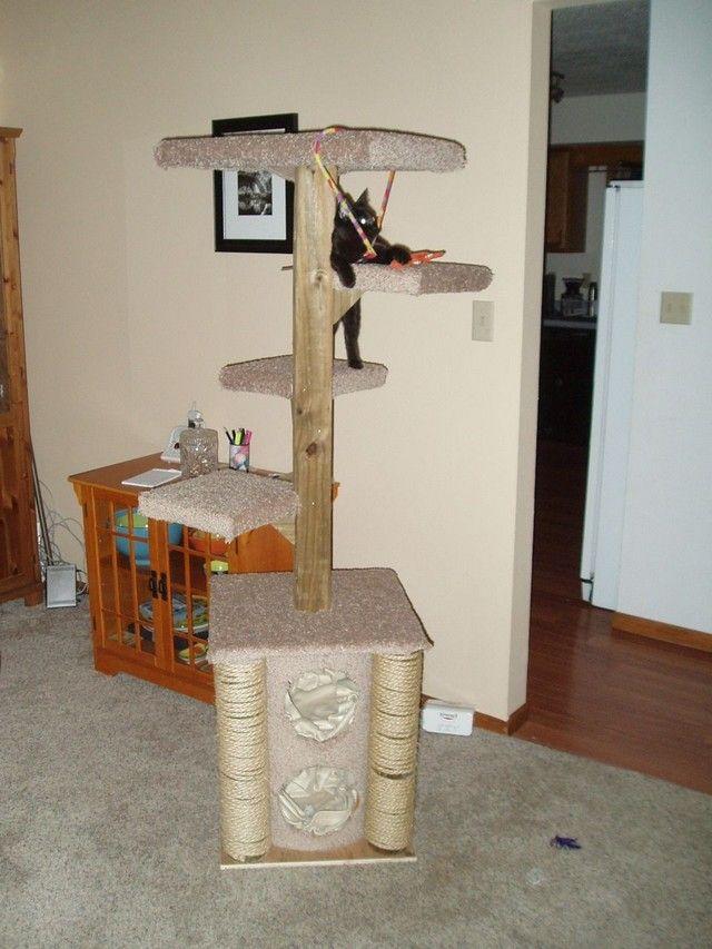 Interesting Facts > Animals > Diy Cat Condo Plans Free #cattrees - Make your cat happy - Catsincare.com!