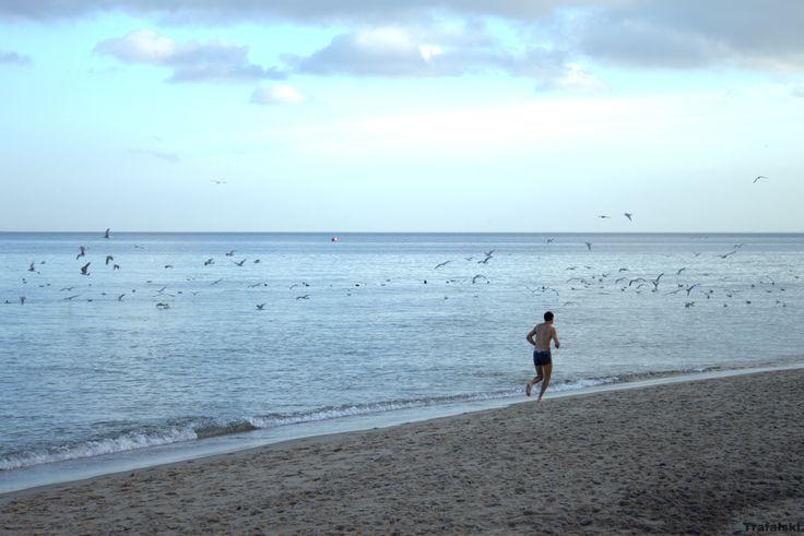 Gdynia - Plaża , morze i zimny mors #Photography #ILovePhoto