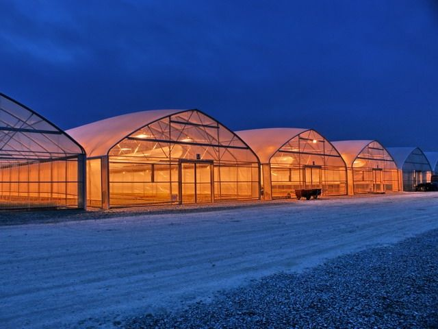 Commercial Greenhouse North Slope Greenhouse For