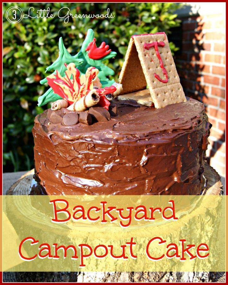 What Little Boy Wouldnt Love A Campout Birthday Party Come See The Simple Tutorial For Making An Awesome Backyard Cake By 3