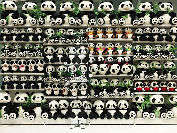 Artist Liu Bolin among pandas......One single photo takes up to 10 hours to prepare – Liu uses himself as a blank canvas, and with a little help from an assistant, he paints his body to merge as seamlessly as possible with what is behind him.
